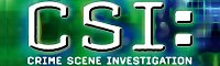 Fanfic in CSI: Crime Scene Investigation